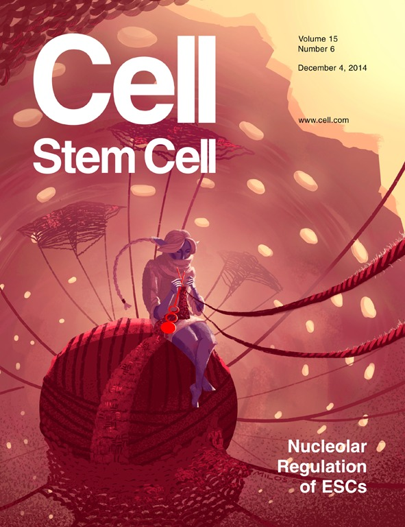 Cell Stem Cell Cover